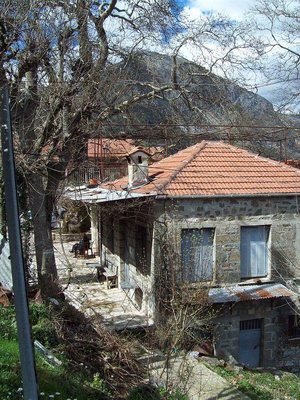 Dafnoti Arta Greece 03